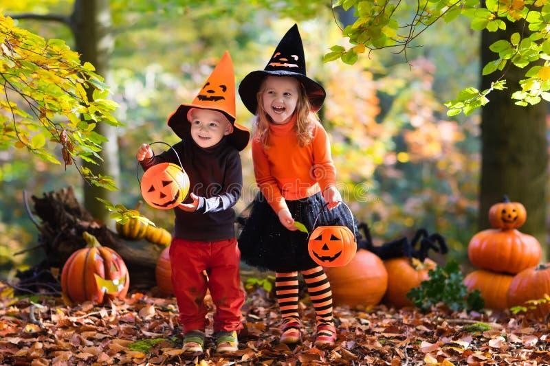 Niños con las calabazas en Halloween fotografía de archivo libre de regalías