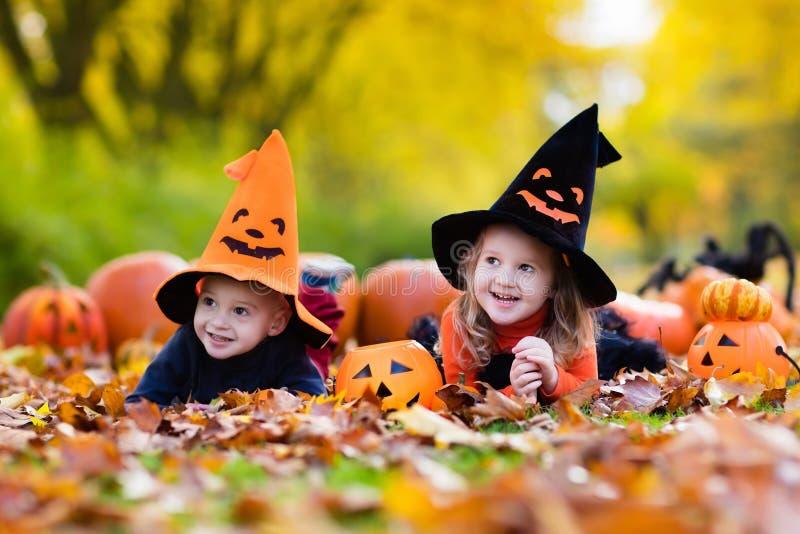 Niños con las calabazas en Halloween imágenes de archivo libres de regalías