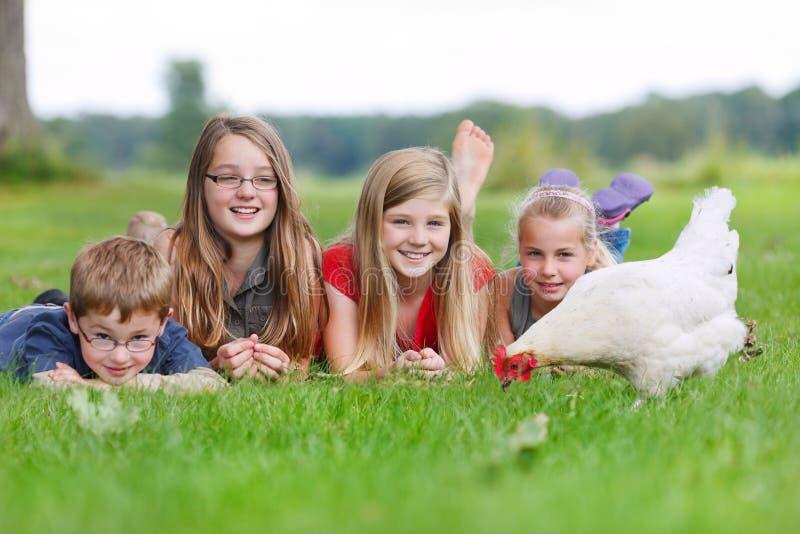 Niños con un pollo foto de archivo