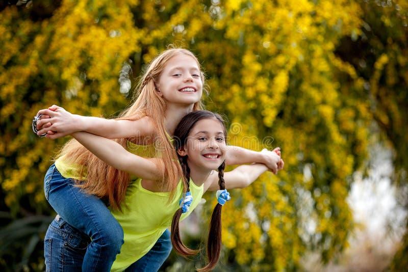 Niños de la amistad en el campo del sommer fotos de archivo