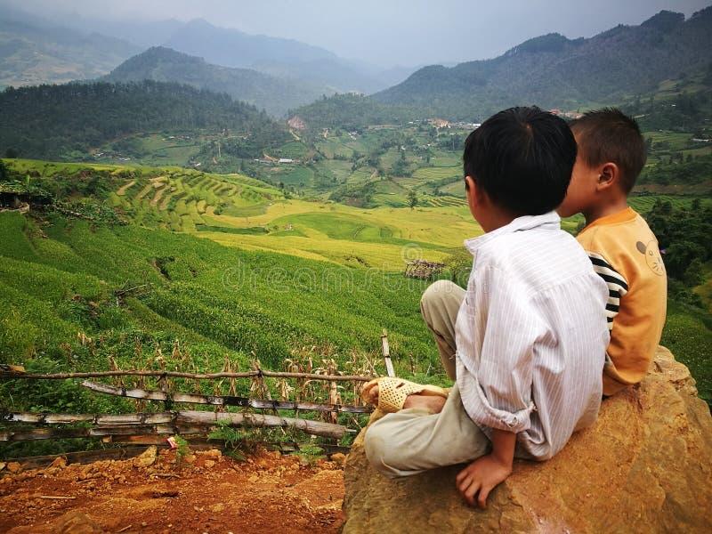 Niños de la minoría de Hmong Miao que se sientan en una roca en un valle del campo de arroz amarillo de arroz foto de archivo libre de regalías