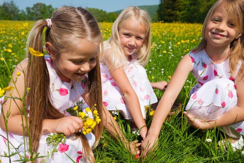 Niños en caza del huevo de Pascua imagen de archivo