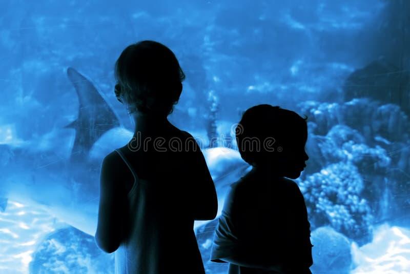 Niños en el acuario imágenes de archivo libres de regalías