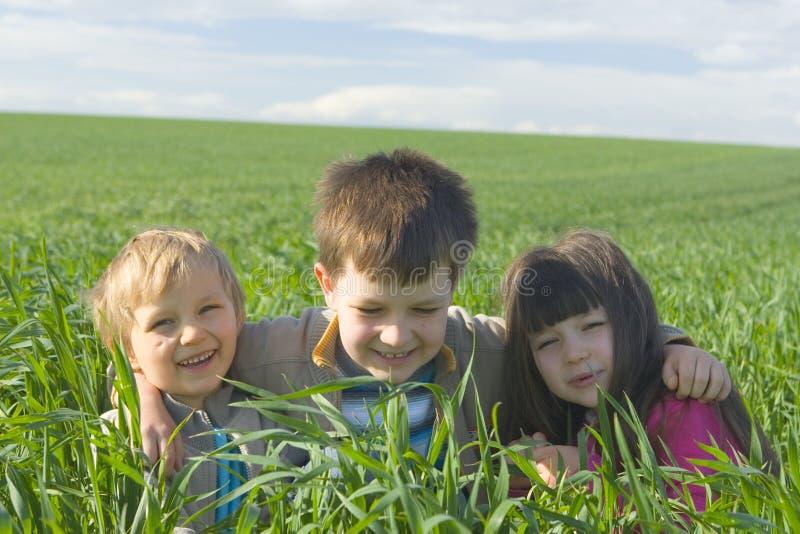 Niños en hierba imagen de archivo libre de regalías