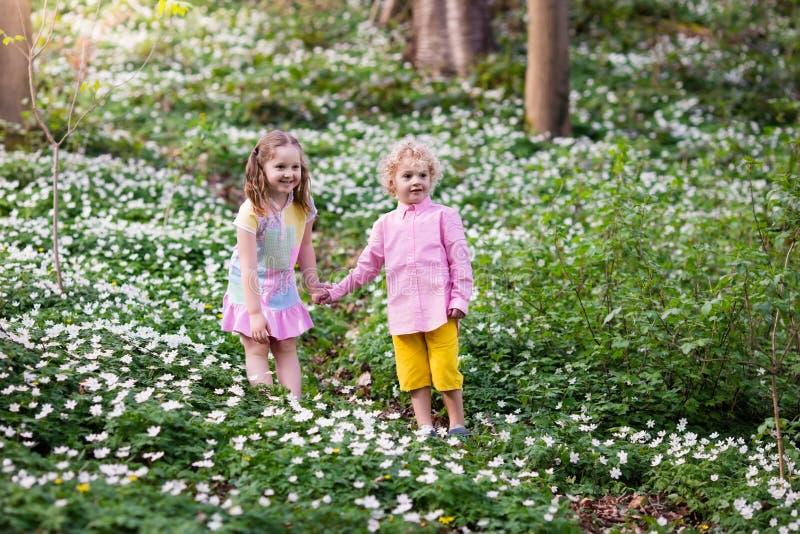 Niños en parque de la primavera con las flores fotos de archivo