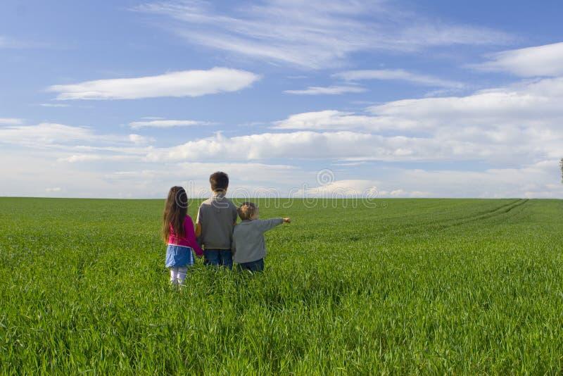 Niños en prado imagen de archivo libre de regalías