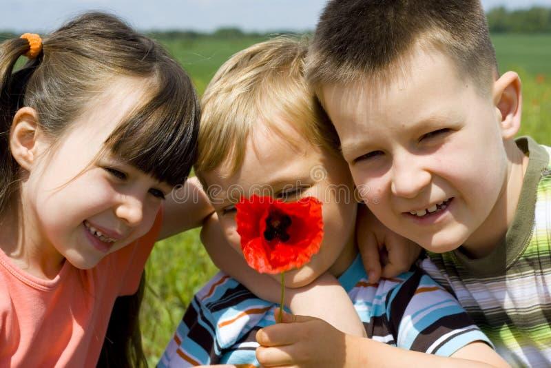Niños en prado fotos de archivo