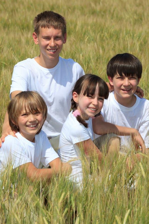 Niños felices en campo de maíz foto de archivo