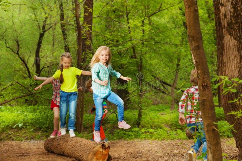 Niños felices que equilibran la colocación en el bosque del inicio de sesión foto de archivo libre de regalías