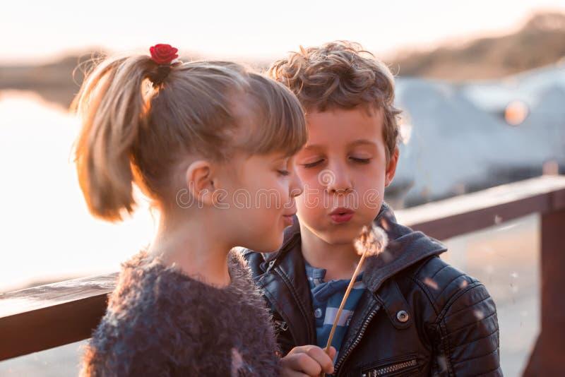 Niños felices que soplan en un diente de león imagen de archivo libre de regalías