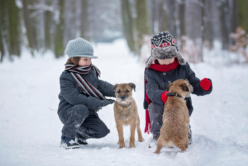 Niños lindos, hermanos del muchacho, jugando en la nieve con sus perros imagen de archivo libre de regalías