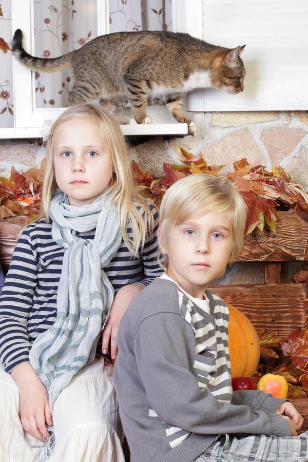 Niños - muchacho, muchacha y gato fotografía de archivo