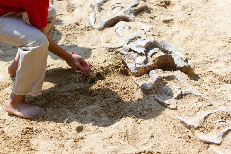 Niños que aprenden alrededor, simulación de excavación de los fósiles de dinosaurio imagen de archivo libre de regalías