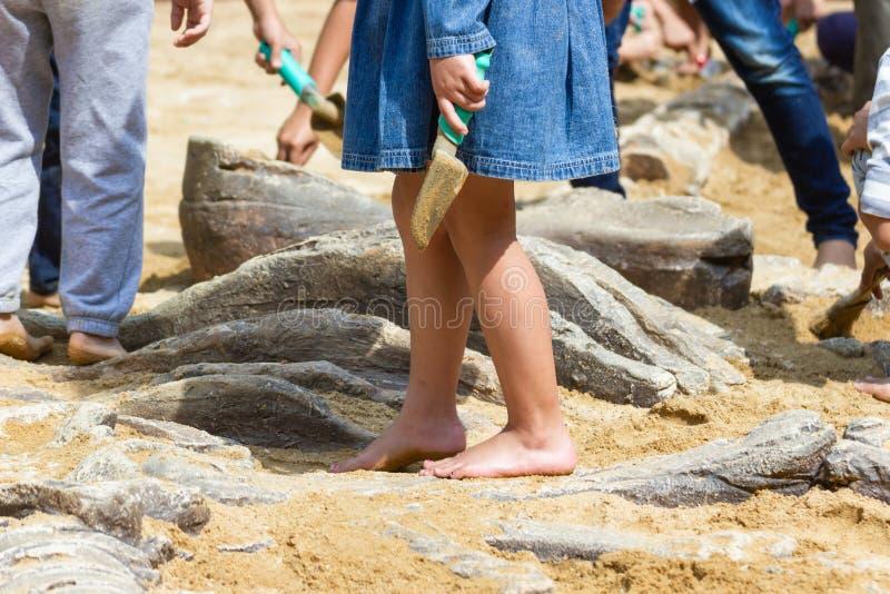 Niños que aprenden alrededor, simulación de excavación de los fósiles de dinosaurio fotografía de archivo