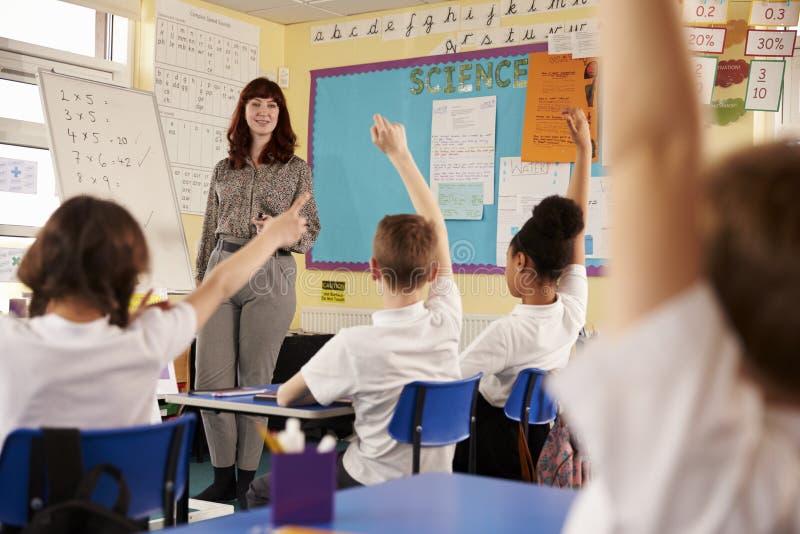 Niños que aumentan las manos en una clase de escuela primaria, opinión de ángulo bajo fotos de archivo libres de regalías