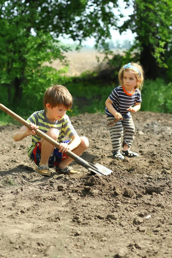 Niños que ayudan a plantar las patatas en el jardín foto de archivo