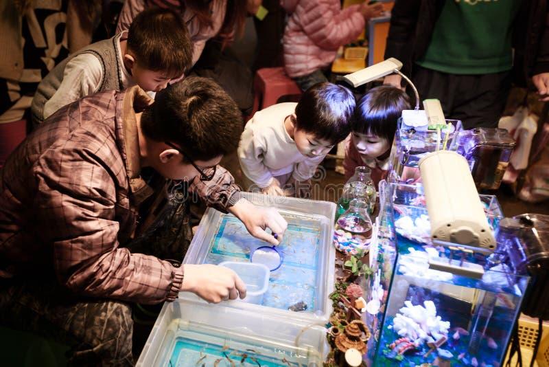 Niños que cogen pescados en el mercado callejero local, Taiwán foto de archivo libre de regalías