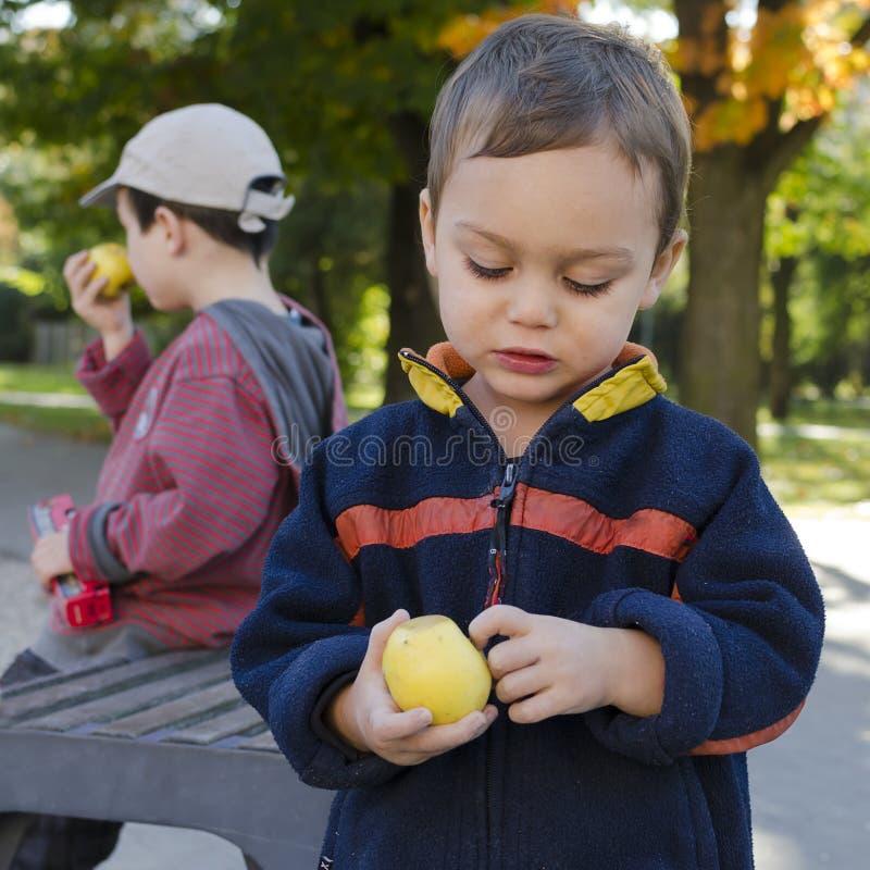 Niños que comen la manzana imágenes de archivo libres de regalías
