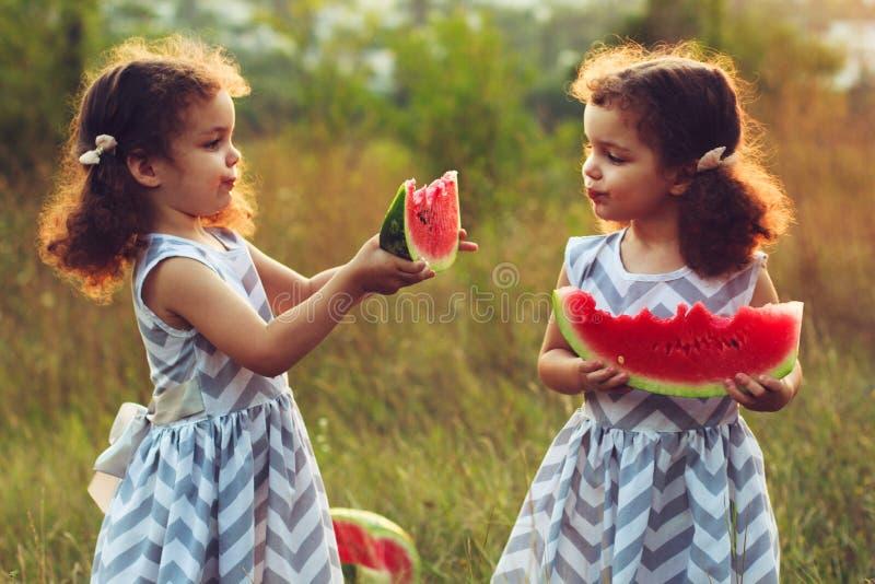 Niños que comen la sandía en el parque Los niños comen la fruta al aire libre Bocado sano para los niños Pequeños gemelos que jue imagenes de archivo