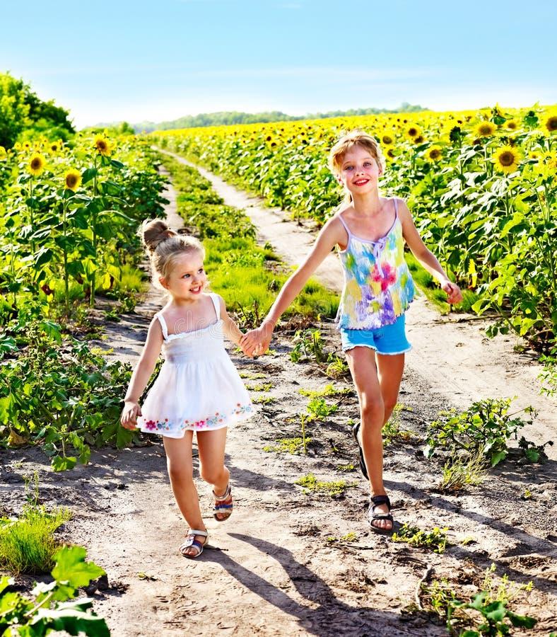 Niños que corren a través del campo del girasol al aire libre. fotografía de archivo