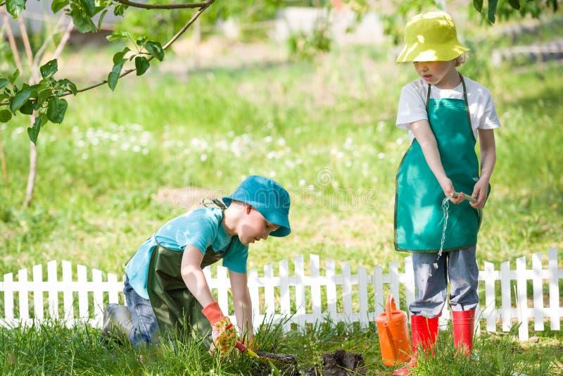 Niños que cultivan un huerto y que riegan imagenes de archivo