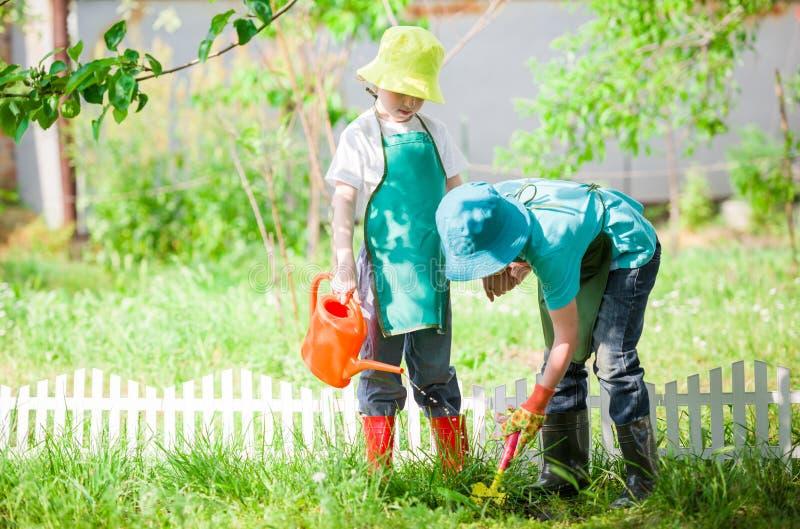 Niños que cultivan un huerto y que riegan fotografía de archivo libre de regalías
