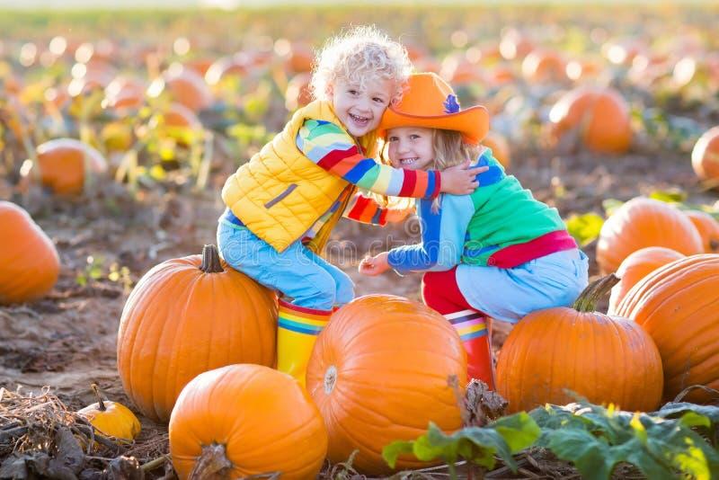 Niños que escogen las calabazas en remiendo de la calabaza de Halloween fotos de archivo