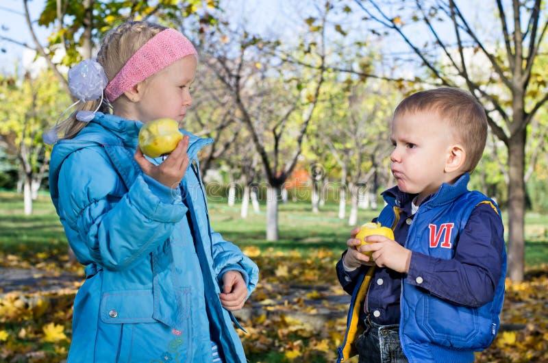 Niños que gozan comiendo manzanas frescas fotografía de archivo