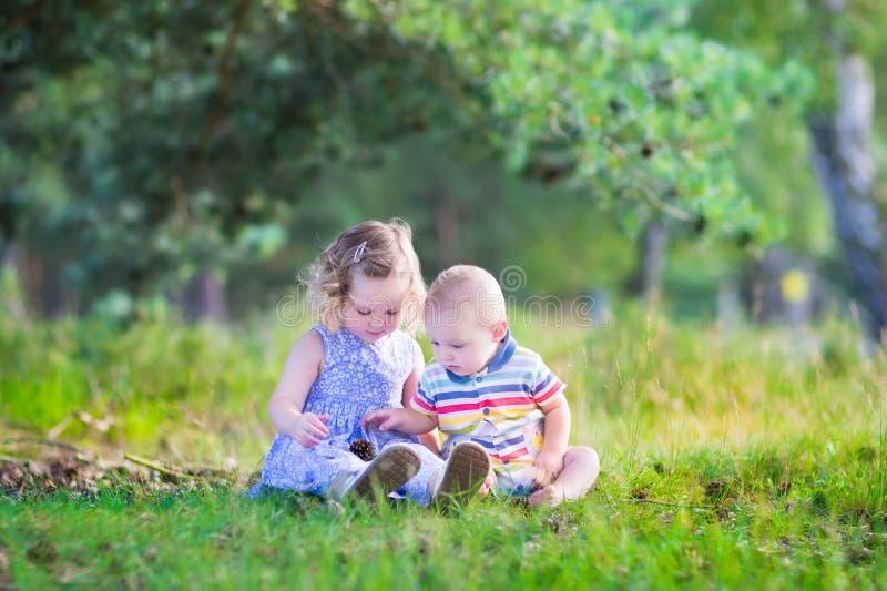 Niños que juegan con los conos del pino imagenes de archivo