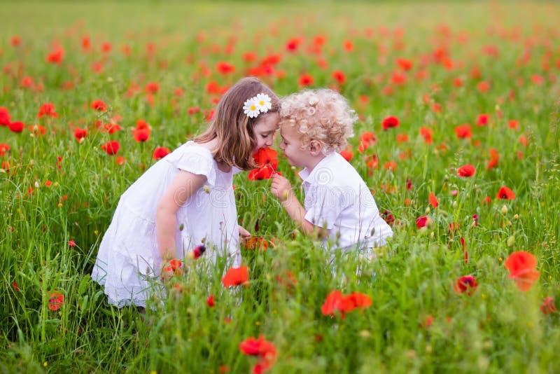 Niños que juegan en campo de flor rojo de la amapola imagen de archivo libre de regalías