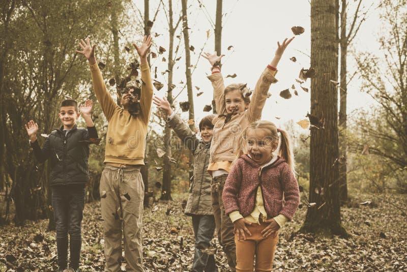 Niños que juegan en hojas de la caída fotografía de archivo