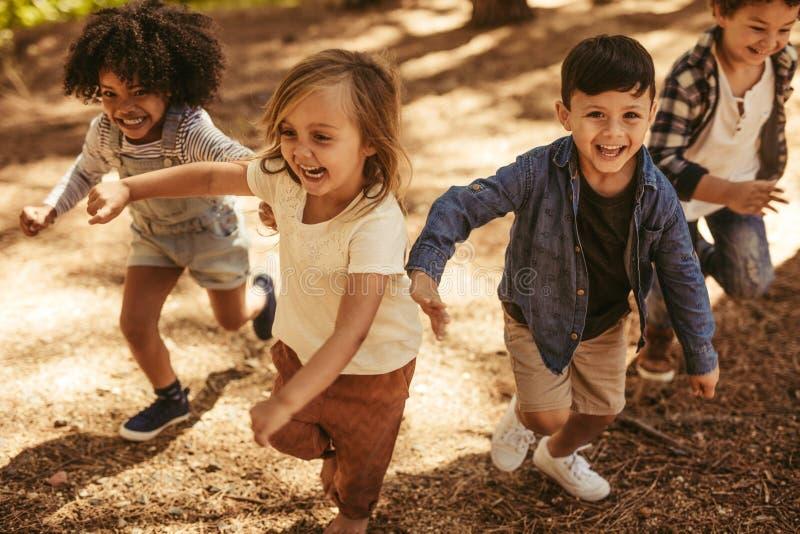 Niños que juegan junto en bosque fotos de archivo