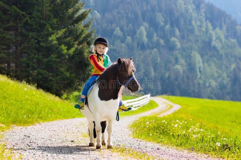Niños que montan el potro Niño en caballo en montañas de las montañas imagen de archivo