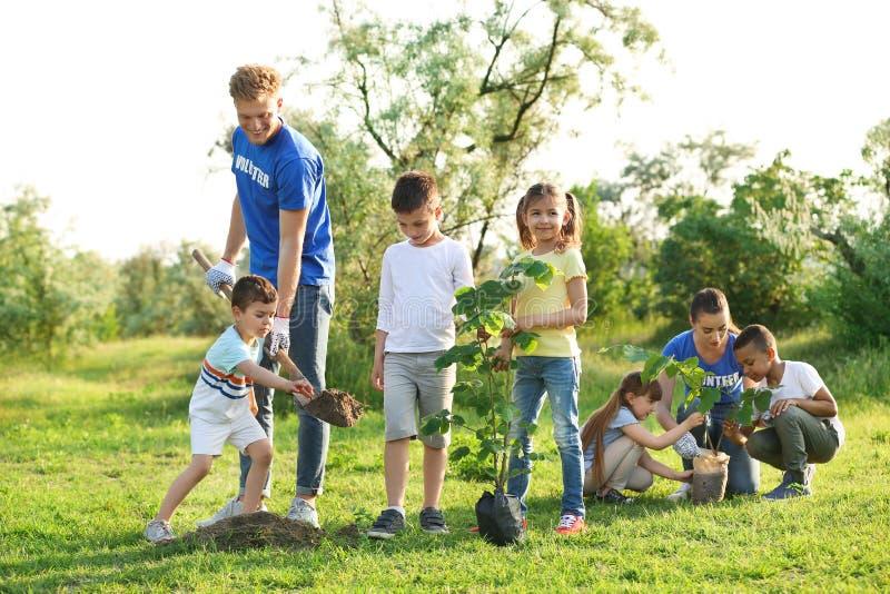 Niños que plantan árboles con los voluntarios fotos de archivo
