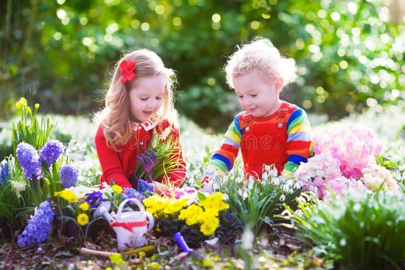 Niños que plantan las flores en jardín floreciente fotos de archivo
