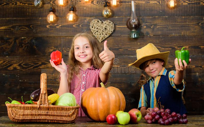 Niños que presentan a cosecha de la granja el fondo de madera Mercado de la granja Las verduras del muchacho de la muchacha de lo fotografía de archivo libre de regalías