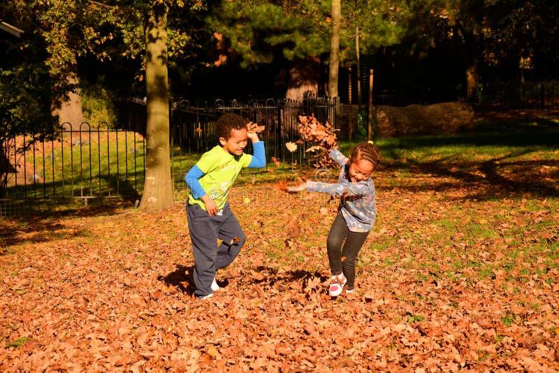 Niños que se divierten con las hojas de otoño en el parque foto de archivo