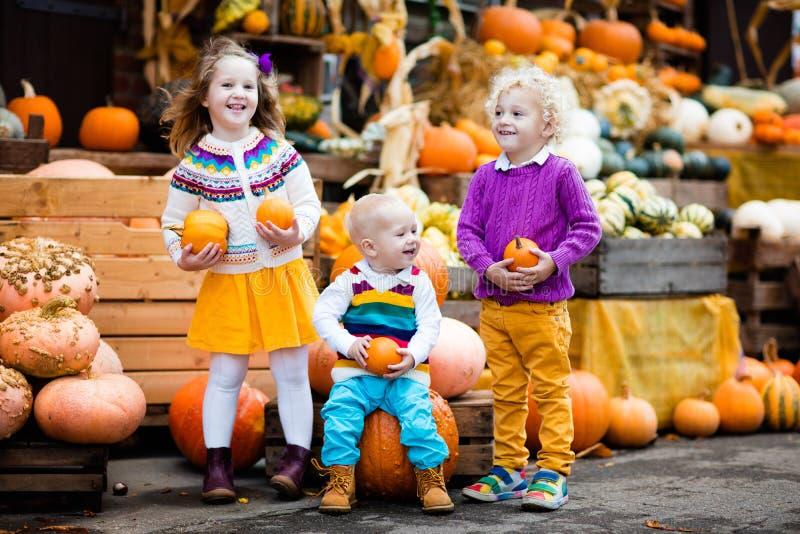 Niños que se divierten en el remiendo de la calabaza foto de archivo libre de regalías
