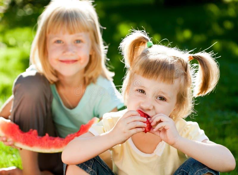 Niños que tienen comida campestre foto de archivo