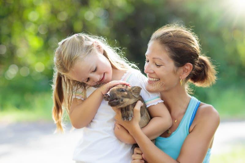 Niños y animales del campo Niño con el cerdo del bebé en el parque zoológico fotografía de archivo