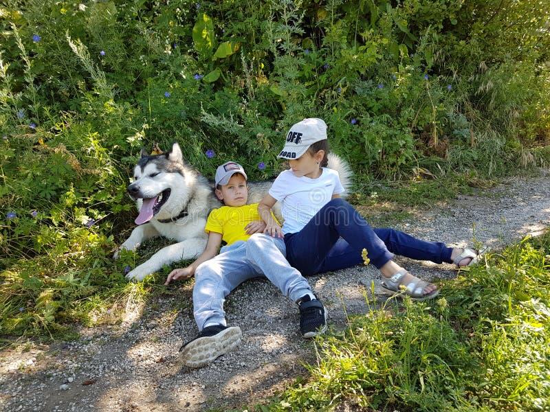 Niños y perro Malamut foto de archivo libre de regalías