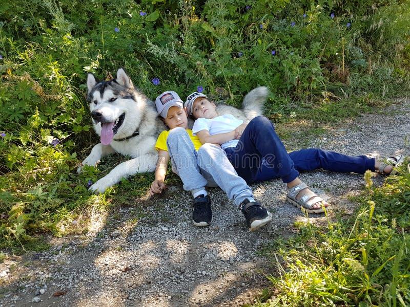 Niños y perro Malamut imagen de archivo