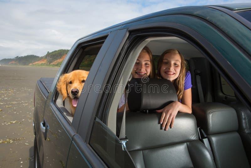 Niños y un perro en el asiento trasero fotografía de archivo libre de regalías