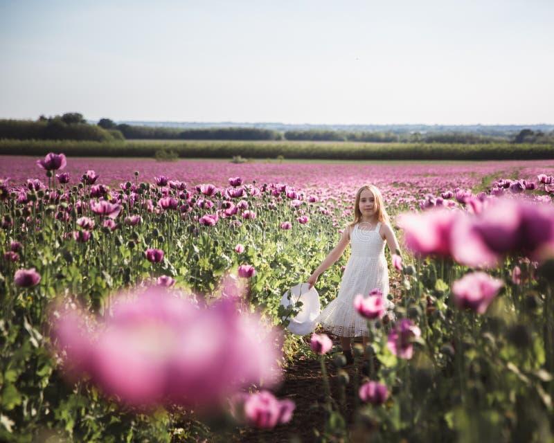 Ni?a adorable con el pelo largo en caminar solo del vestido blanco en el campo de Poppy Flowers de la lila fotografía de archivo libre de regalías
