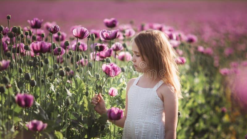 Ni?a adorable con el pelo largo en caminar solo del vestido blanco en el campo de Poppy Flowers de la lila imagen de archivo libre de regalías