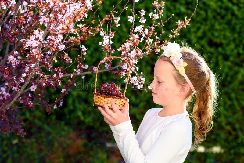 Ni?a linda que presenta con la fruta fresca en el jard?n soleado Ni?a con la cesta de uvas imágenes de archivo libres de regalías