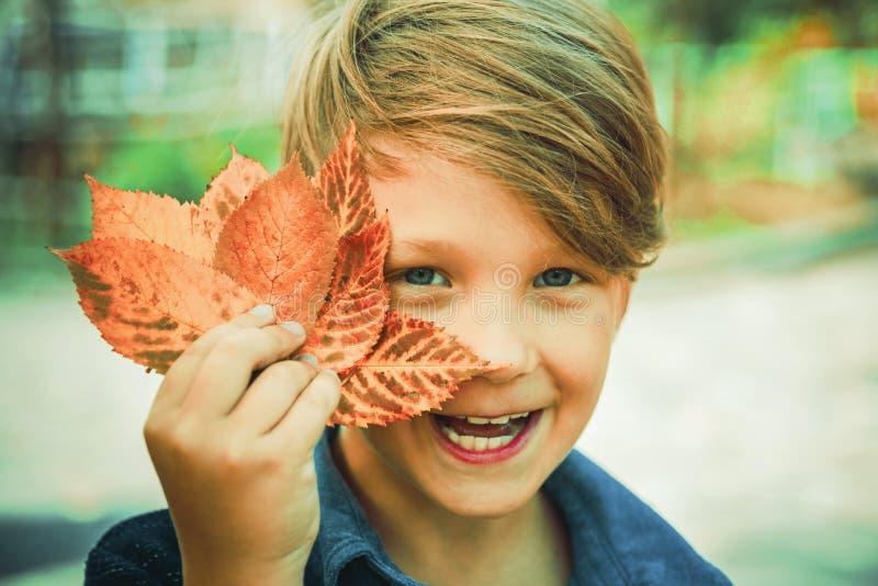 Ni?o peque?o sonriente que juega con las hojas y la mirada de la c?mara Retrato del primer El muchacho del ni?o miente en el heno fotografía de archivo