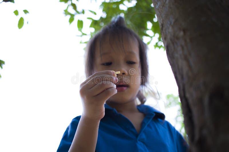 Ni?os que intentan alimentando un pedazo de comida a la hormiga, el ni?o precioso de Asia que sostiene una comida e intentar alim imagen de archivo