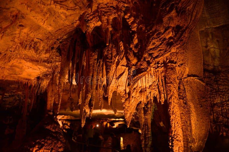 Niagara congelado, parque nacional da caverna gigantesca, EUA fotos de stock royalty free