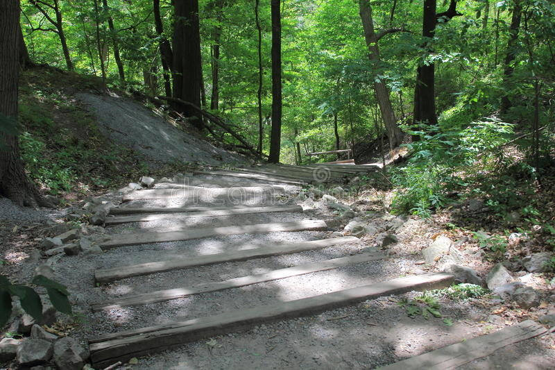 The Niagara Gorge Trail Walk. Descending the trail of the Niagara Gorge will bring you to the level of the mighty river. This journey will give you a better stock photos